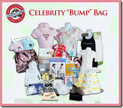 jewels and pinstripes celebrity bump bag
